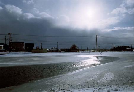 2008_01_16_nikon_f80s_169_21
