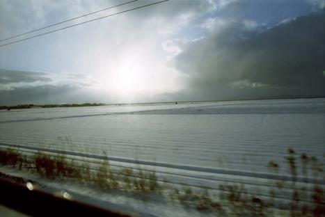 2008_01_16_nikon_f80s_170_18a