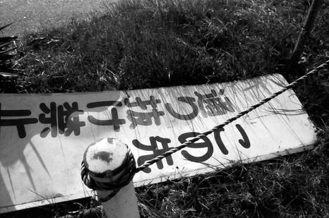 2008_01_30_nikon_f80s_171_17