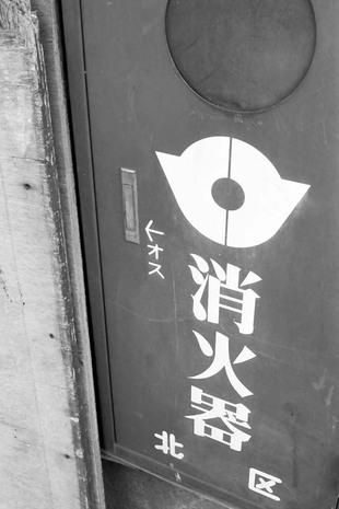 2008_02_11_nikon_f80s_174_19