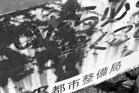 2008_02_11_nikon_f80s_175_21
