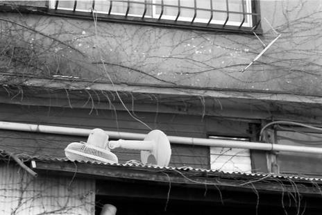 2008_02_11_nikon_f80s_178_03