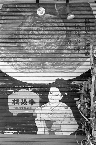 2008_02_11_nikon_f80s_178_20