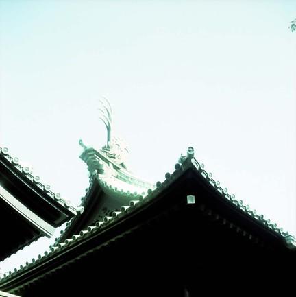 2008_02_21_minoltaflex_016_02