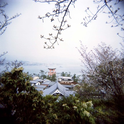 2008_04_02_holga_037_12