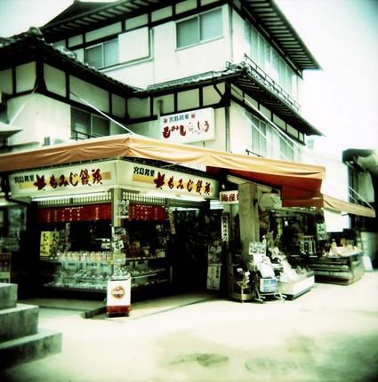 2008_04_02_holga_038_12