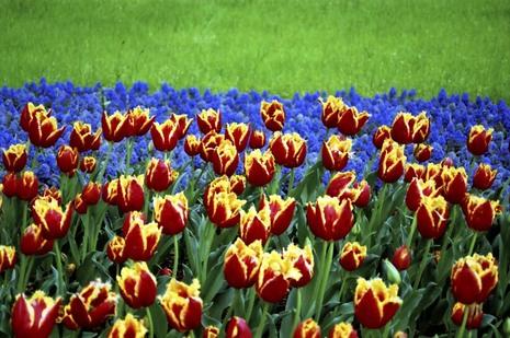 2008_04_19_nikon_f80s_209_09