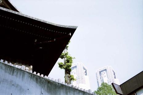 2008_04_30_nikon_f80s_200_07