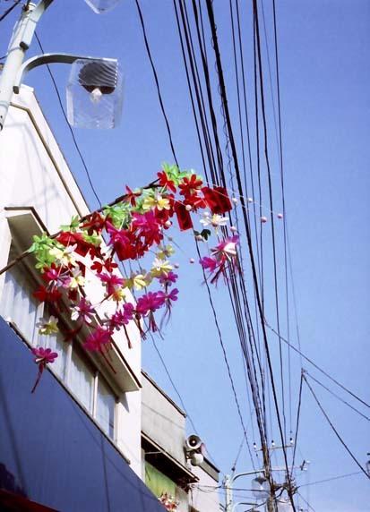 2008_05_15_fujicahalf_008_19