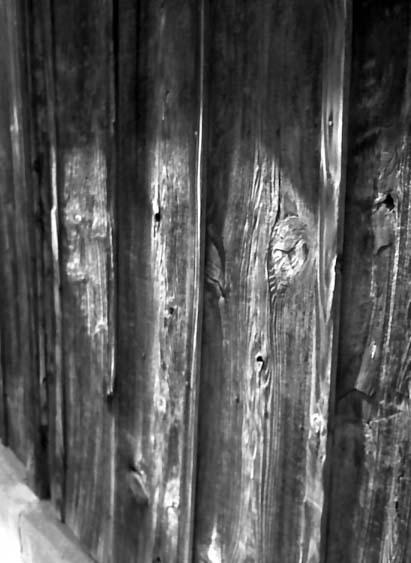 2008_05_06_fujicahalf_006_06