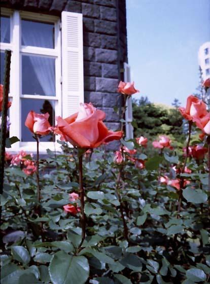 2008_05_15_fujicahalf_007_21