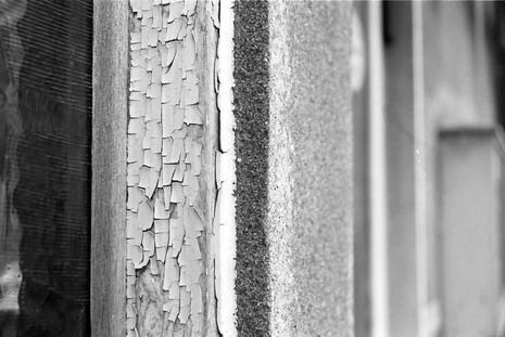 2008_05_15_nikon_f80s_222_07