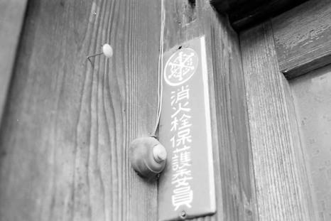 2008_05_25_nikon_f80s_223_23