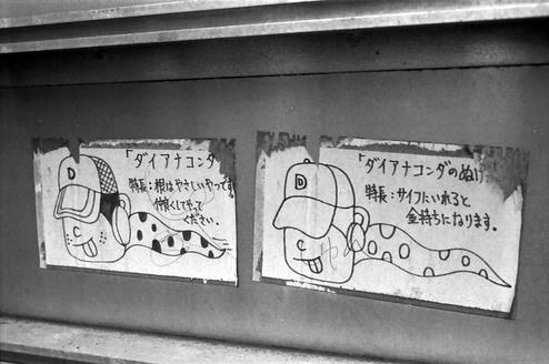 2008_05_30_nikon_us_007_06