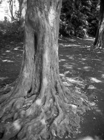 2008_06_13_autohalf_s_008_23a