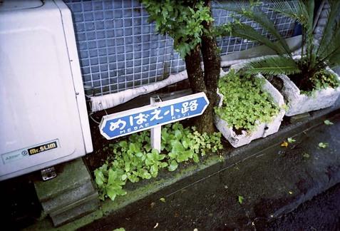 2008_06_22_ricoh_r1_000_33