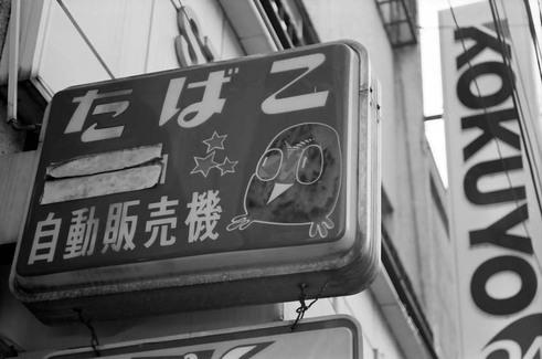 2008_07_02_nikon_f80s_237_08