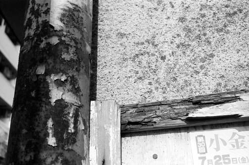 2008_07_23_nikon_f80s_241_24