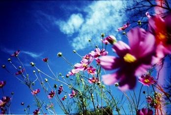 2009_09_10_ricoh_r1_047_32